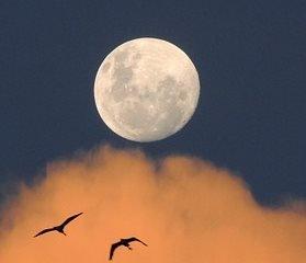 Birth Number 2 - symbolizes Moon